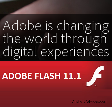 Adobe Flash 11.1 Logo