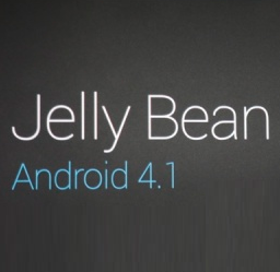 Android 4.1 Logo