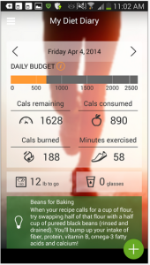 My Diet Diary Calorie Counter 2